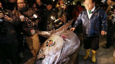 بيع سمكة تونة بـ52 ألف يورو في مزاد باليابان