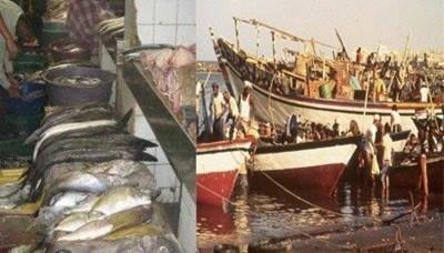 اكثر من 293مليون دولار قيمة الصادرات السمكية خلال العام الماضي