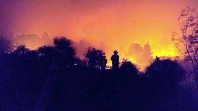 بالفيديو والصور.. الحرائق تشتعل فى اسرائيل.. ونتنياهو يطلب النجدة