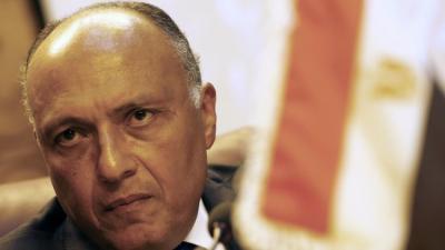 مصر ترد على بيان دول الخليج !