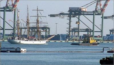 اليمن يُصدر الأسماك ونخالة القمح إلى تسع دول في العالم