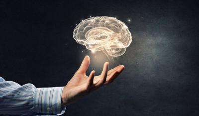 5 معلومات عن الدماغ أبرزها عقلانية الرجال وعاطفية النساء