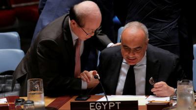 مصر تكشف سبب دفاعها عن النظام السوري في مجلس الأمن
