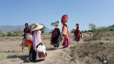 المنظمة الدولية للهجرة: نحو 273 ألف شخصاً نزحوا من منازلهم في محافظة تعز