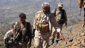 معارك عنيفة في تعز وقتلى وجرحى في مواجهات للجيش والمقاومة ضد الحوثيين وقوات صالح