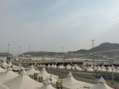 توافد حجاج اليمن مع جموع الحجيج الى مشاعر منى لقضاء يوم التروية