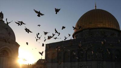"""علماء مسلمون يدعون إلى مواجهة """"التطبيع السياسي"""" مع إسرائيل"""