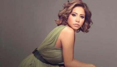 فنانون عرب خسروا جمهورهم عام 2017 ..   لهذه الأسباب ؟