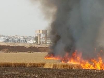 """اندلاع 17 حريقا في مستوطنات """"غلاف غزة"""" بفعل الطائرات الورقية الفلسطينية"""