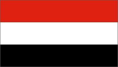 اليمن الـ 3 عربياً والـ 22 عالمياً بقائمة الشعوب الأكثر ذكاء في العالم
