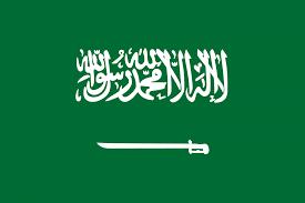 السعودية تعلق على تصنيف أمريكا للحوثيين كمنظمة إرهابية