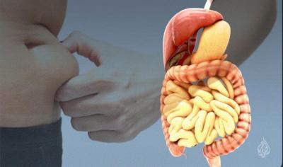 علماء يبتكرون مكملا غذائيا يعطي إحساسا بالشبع