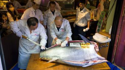 سمكة تونا حمراء تباع بـ37 ألف دولار في مزاد بطوكيو