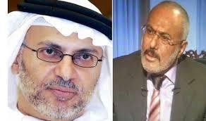 """أول رد قاسي لمسؤول إماراتي على مقابلة  الرئيس السابق """" صالح """" مع قناة الميادين"""