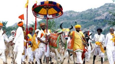الحزب الحاكم في الهند يطالب المسلمين التوقف عن أكل لحم البقر كون البقر ركن من أركان العقيده ( صور)