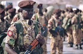 دول عربية أخرى سترسل وحدات من جيوشها إلى عدن إلى جانب القوات السودانية - تفاصيل