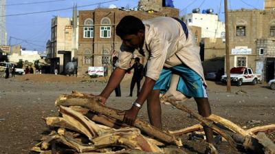 بالصور .. الحمير تعود إلى شوارع المدن اليمنية .. والحطب أصبح مصدر رئيسي للطاقة